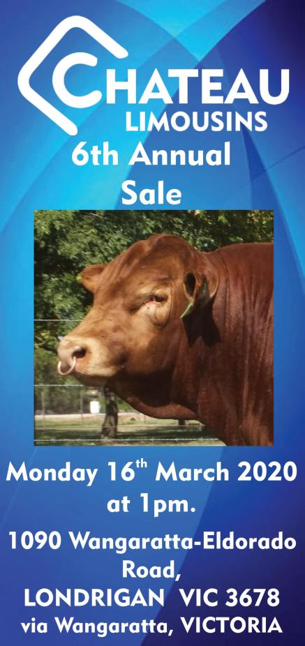 Chateau Limousins - 2020 - 6th Annual Sale Cover